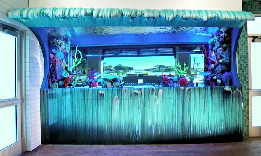 salt life food shack wave aquarium
